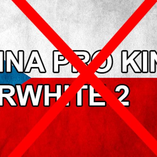 Čeština pro Amazon Kindle Paperwhite 2 4GB