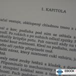 recenze_bookeen_cybook_ocean_ctecka_axos_05